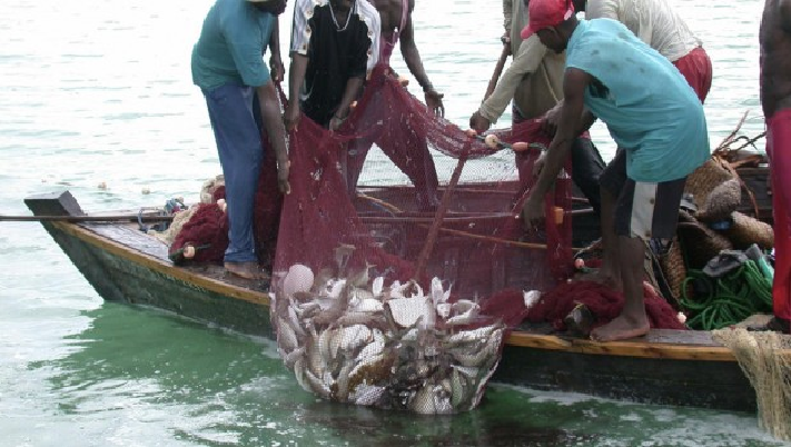 Government to resume supply of outboard motors to Fishermen – Minister